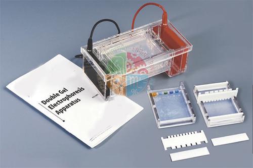 Double Gel Electrophoresis Apparatus