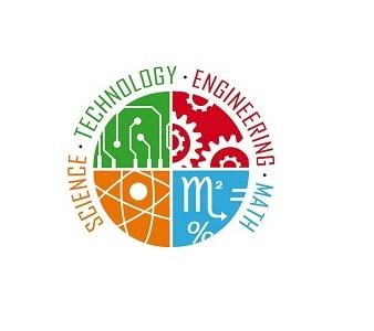 DNA Fingerprinting Electrophoresis Lab Activity